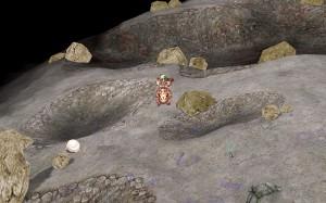 月のフィールド